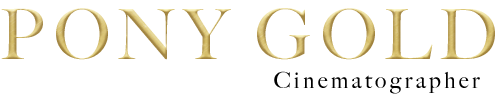 Pony Gold Logo